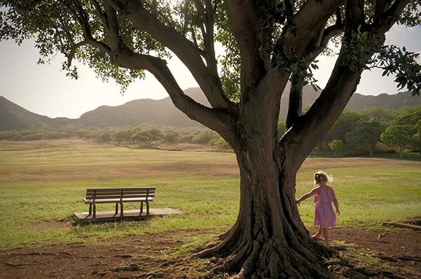 Kind-Baum